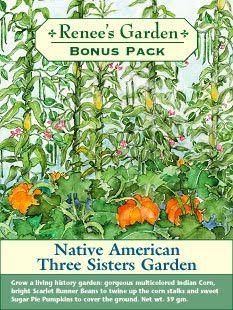 Native American Three Sisters Garden  Renee's Garden Bonus pack