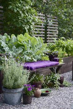 Trädgårdsflow: Purple Passion: Garden with purple flowering plants. Container gardening with raised beds and pots of herbs. Outdoor Rooms, Outdoor Gardens, Outdoor Living, Unique Gardens, Beautiful Gardens, Jardin Decor, The Secret Garden, Backyard Seating, Garden Cottage