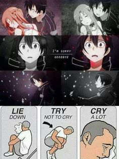 Sword Art Online / That ending wrecked me. Not as bad as Angel Beats, but still sad!
