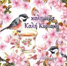 Good Night, Good Morning, Quotes, Nighty Night, Buen Dia, Quotations, Bonjour, Have A Good Night, Bom Dia