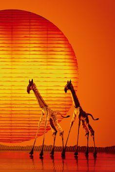Giraffen im Sonnenuntergang... #KönigderLöwen #Hamburg #Musicalreise