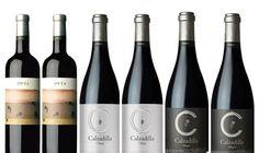 Lote de Vinos Pago de Calzadilla INCLUYE:     Calzadilla / Opta 2008     Calzadilla / Calzadilla Classic 2007     Calzadilla / Calzadilla Allegro 2007 LA SELECCIÓN SE COMPONE DE 2 BOTELLAS DE CADA VINO  http://www.vinosdecuenca.es