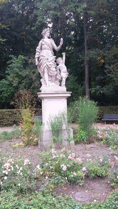 Rosengarten in Tiergarten