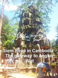 You know you want to read the rest 👉 Siem Reap in Cambodia – The gateway to Angkor Wat https://volleontour.com/2017/08/24/siem-reap-in-cambodia-the-gateway-to-angkor-wat/?utm_campaign=crowdfire&utm_content=crowdfire&utm_medium=social&utm_source=pinterest  #travel #photography #traveling #traveler #travelphotography #travelling #travelingram #traveltheworld #travelblogger #traveller #travels #travelblog #traveldiaries #traveladdict #travellife #travelphoto #travelpics #photographylovers…