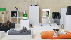 Yay! IKEA komt met een lijn speciaal voor honden en katten