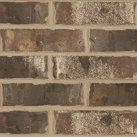 Brick on our new house! LOVE IT!!! Sheltered Bluff Residential - Bricks - Boral USA