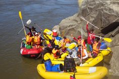 SA Forest Adventures - River Rafting Trips on the Orange River, Northern Cape Forest Adventure, Pretty Beach, Adventure Activities, Solo Travel, Rafting, Kayaking, South Africa, Cape, Trips