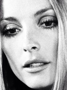 Sharon Tate perfection