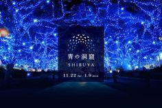 墮進藍色星光陣!闊別兩年,東京「青の洞窟」將亮燈,勢成為澀谷熱點!