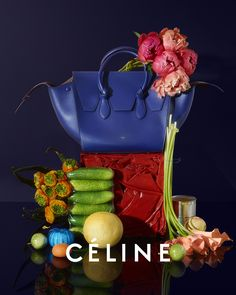 Celine Fall 2014 Ad Campaign featuring the new Pre-fall 2014 Bag Styles