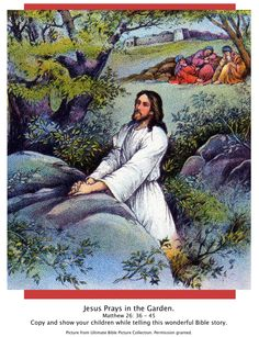 Bible Story picture of Garden of Gethsemane-Lk 22:39-44. Show your children while telling this wonderful Bible Story.