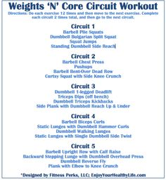 Weights 'N' Core Circuit Workout via @Annette Perkins-FitnessPerks