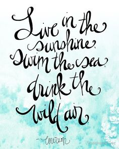 """""""Live in the Sunshine, swim the sea, drink the wild air"""" by Ralph Waldo Emerson Quotes To Live By, Me Quotes, Drawn Quotes, Beach Quotes, Qoutes, Cool Words, Wise Words, Emerson Quotes, Sunshine Quotes"""