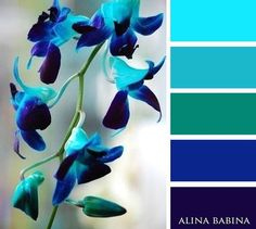"7 Likes, 1 Comments - Colors by Alina Babina (@alinababinacolors) on Instagram: ""#alinababina #alinababinacolors"""