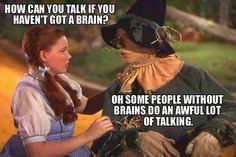 Wizard of Oz                                                                                                                                                                                 More