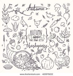 Thanksgiving traditional symbols in doodle style. Autumn collection of hand drawn design elements for greeting card, invitation, poster, flyer templates: turkey, cornucopia, pumpkin pie, lettering.