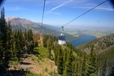 Not only is the lake beautiful -- the whole area is simply spectacular. At the edge of the lake you'll find the Wallowa Lake Tramway. Hop on board and take an unforgettable ride to the summit of Mount Howard.