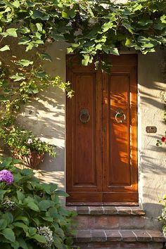 gorgeous Tuscan Door by Brian Jannsen