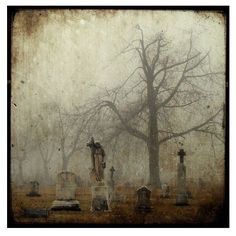 An old photo from The Photomakers leather bound album, a place of mist & shadow, a place where the living are the hunted. A future book of Richard Alan ~;^/>