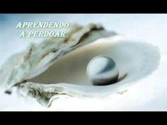 APRENDENDO A PERDOAR ( REFLEXÃO DE VIDA )