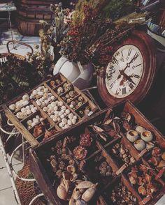 6.Sept.2016  小分けされた木箱ってなんでこんなに可愛いのかな 木の実を種類別に入れてみるまるで木の実マルシェ @maison.de.amelie にて販売中自分好みのアソートが作れますよ  #ブロカント #秋 #autumn  #automne #時計 #clock #antique #antiques #antiqueshop #brocante #brocantestyle #vintage #vintagestyle #deco #display #木の実 #dryflower #ドライフラワー #ドライフラワーのある暮らし #アンティークショップ #木箱 #woodbox #country #old #ラココット #レトロ #rustic #ボタニカル #botanical