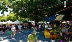 Port Douglas markets on a Sunday morning.