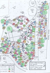 Moreland Community Gardening: Food Forest (great no maintenance, harvest-only, perma-culture landplot idea)