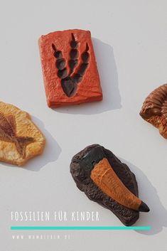 Ihr möchtet Fossilien suchen mit Kindern? Dann habe ich hier ein schönes Set für euch (selbst bezahlt). #dino #dinos #dinosaurier #fossilien #kindergeburtstag #überraschung #kindergarten #vorschule #garten