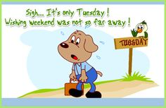 Sigh....It's only Tuesday! cute day days of the week tuesday weekday tuesday greeting tuesday gif