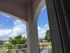 Palm Beach, Windows, Ramen, Window