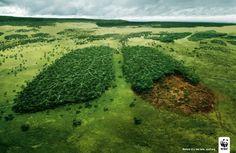 """Este anuncio de la World Wildlife fund (WWF) plasma a la perfección el problema de la deforestación global. """"Antes de que sea demasiado tarde"""""""