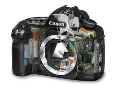 Guida all'uso di una fotocamera Reflex