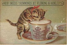 Victorian Trade Card - Fleming and Oakley