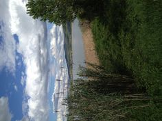 Trasimeno Lake umbria
