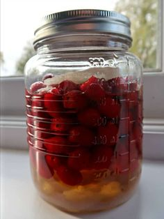 How to Make Raw Rosehip Syrup. Easy No-cook Recipe. • Craft Invaders Gin Recipes, Cooking Recipes, Rosehip Syrup, Rosehip Recipes, Garlic Chips, Cordial Recipe, Vegetable Crisps, Crisp Recipe