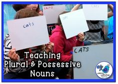 Teaching Plural and Possessive Nouns