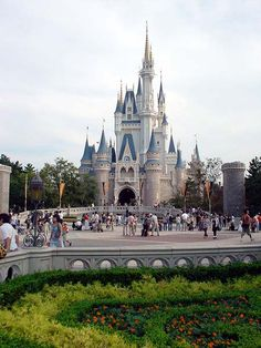 Tokyo Disney! I want to go to all the Disney parks!