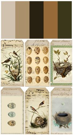 Vintage Labels Vintage Bird-Inspired tags - free printables from Lilac Images Vintage, Vintage Tags, Vintage Labels, Vintage Ephemera, Printable Vintage, Vintage Paper, Vintage Prints, Printable Labels, Free Printables