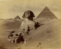 Sphinx - 1860s-1880s:  The Middle East by Félix Bonfils