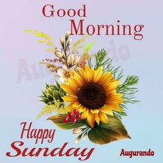 Best Good Morning Sunday Images! Always Updated Images! Happy Sunday Images, Good Morning Sunday Images, Happy Sunday Quotes, Good Morning Wishes, Good Morning Quotes, Sunday Greetings, Good Morning Beautiful Flowers, Fitness Quotes, Mornings