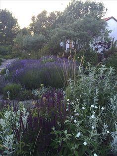 """annasträdgård - Annas trädgård finns på norra Öland. Bloggen handlar om hur den byggts upp från 2005 och du får enkla tips och inspiration till den egna trädgården om alltifrån hur man avskräcker rådjur, anlägger en rabatt, väljer växter till hur man helt enkelt njuter av att """"trädgårdera"""". Om du vill nå mig via mail så skriver du till annastradgard@outlook.com. Tryck på plustecknet om du vill följa mig via bloglovin. På instagram hittar du mig som annamelan."""