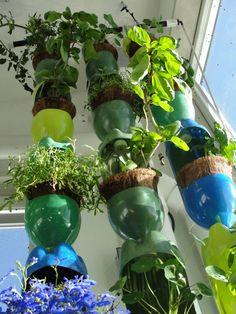 Vertical gardening using soda bottles. PDF download available