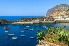 Câmara de Lobos Hop-On Hop-Off Bus and Cabo Girão Tour from Funchal Visit charming village and a breathtaking viewpoint!There are two irresistible ways of getting to know the charming town of Câmara de Lobos. By land, weshow you the best of Funchal via a scenic circuit. The ticket is valid for 24h, allowing you to discover the spots you find most interesting in more detail. By sea, feeling the breeze of the Atlantic, relax on a 1 hour trip aboard the catamaran Sea the Best. ...