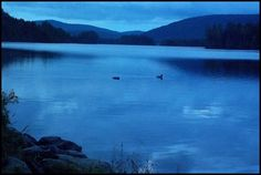 Prong Pond in Maine, U.S. in the early morning. So serene.