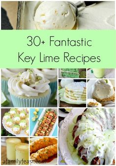30+ Fantastic Key Lime Recipes - A collection of sweet, savory and beverage recipes all using key limes!