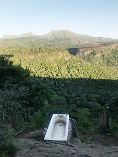 Hogsback, a small village situated on the top of the Amathole mountains. A birders paradise & a hikers dream, here are 5 things to do in this mystical town. Parrot Image, Provinces Of South Africa, Relaxing Bath, Rock Pools, Big Tree, Day Hike, Africa Travel, Hiking Trails, Great Places