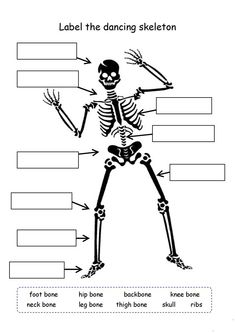 Science gets REALLY interesting in grade. Bones, cells, digestion, animals and more are featured here in our Grade Science Worksheets. Are you ready to learn? There's no more fun way than with worksheets. Halloween Worksheets, 1st Grade Worksheets, Science Worksheets, Kindergarten Worksheets, Worksheets For Kids, Science Activities, Science Experiments, Science Projects, Biology For Kids