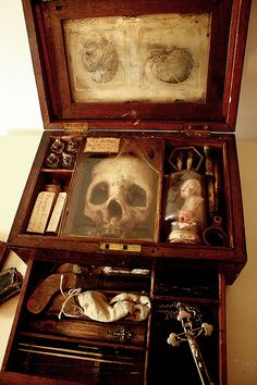 ☠ 18th century Vampyr anatomical research case. Owned by the physician and naturalist Francis Gerber. ☠