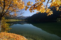 Herbststimmung am #haldensee Foto: TVB Tannheimer Tal/ Wolfgang Ehn