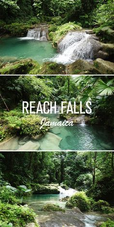 Reach Falls in Portland is a great example of some of the breathtaking natural beauties that Jamaica has to offer. It's by far one of the most beautiful places we have ever visited and a must visit while in Jamaica.